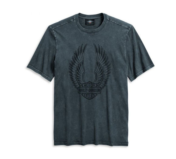 Front view of mens winged logo tee