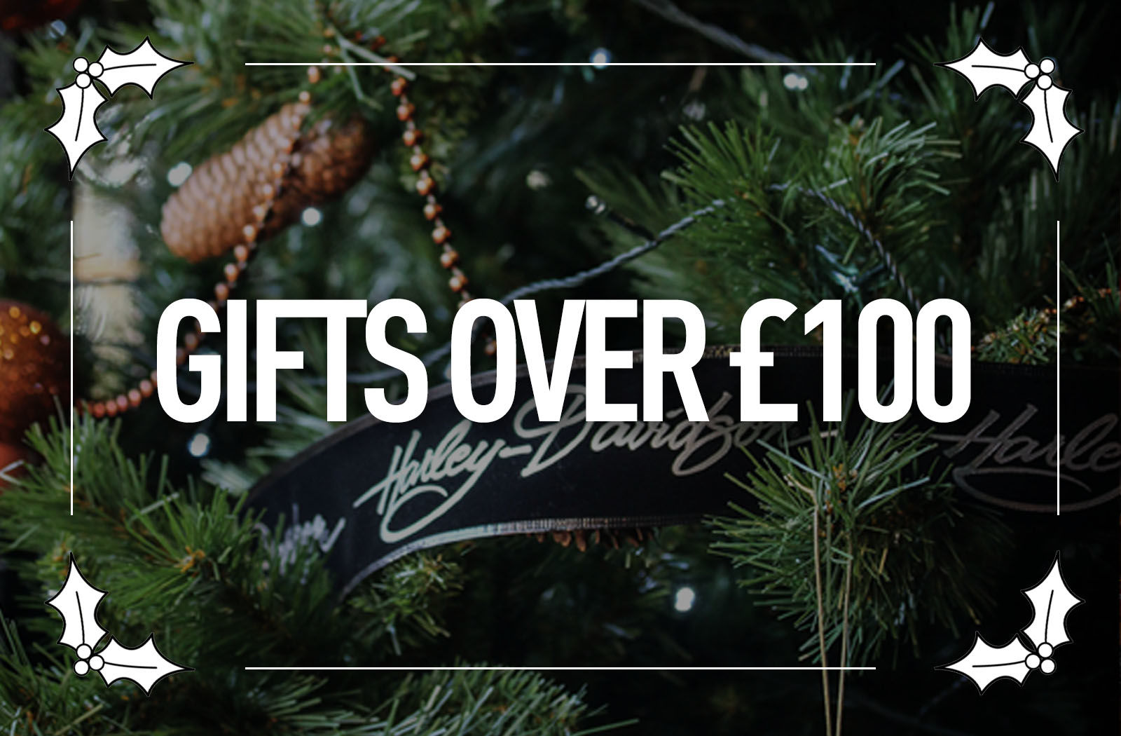 Picture for category Gifts over £100