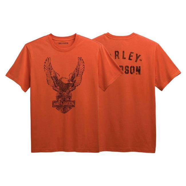 Picture of Men's Winged Eagle Tee